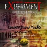 Radio eXperiment