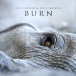 Novi album Lise Džerard: Burn