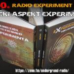 Muzički aspekt eXperimenta